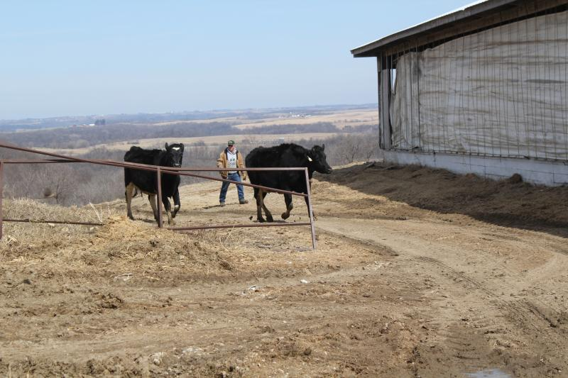 Dairy farmer Tom Weighner recently expanded his business to provide ready-to-eat local dairy products.