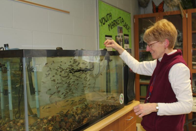 Decorah Middle School science teacher Meg Storkamp connects many lessons to the local watershed.