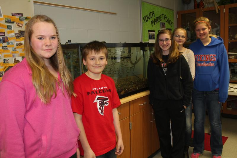 These seventh graders in Decorah are raising trout, which they will release into a stream during a spring field trip. (Left to right: Emma Rolfs, Sean Malone, Ann Meirick, Jaina Jostand and Desirae Ptiz).