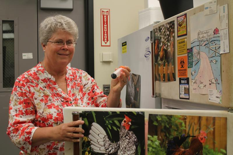 Animal science professor Sue Lamont, shown in her lab at Iowa State, has traveled to Ghana and Tanznia for the Feed the Future project on chickens.