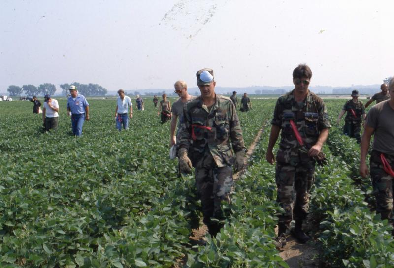 Surrounding fields were combed for victims and evidence