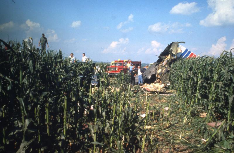 Tall corn helped cushion the impact