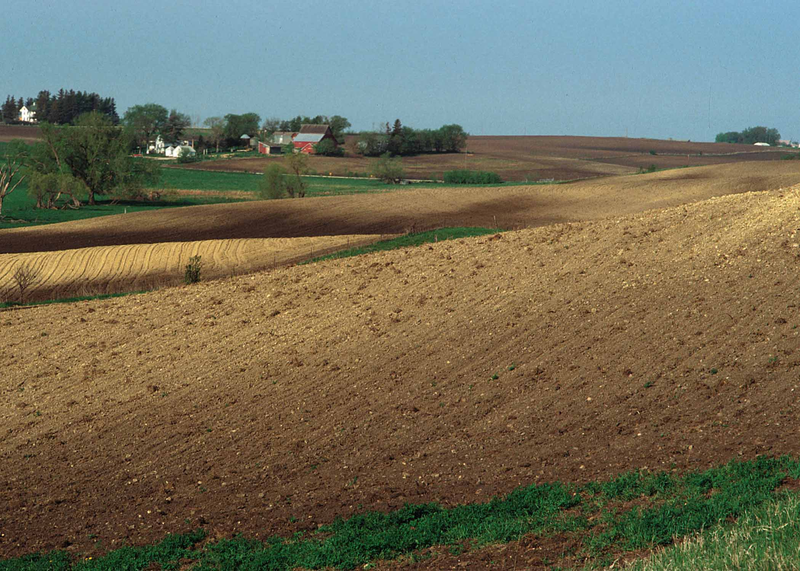 Much of Iowa's soil is eroded due to certain farming practices