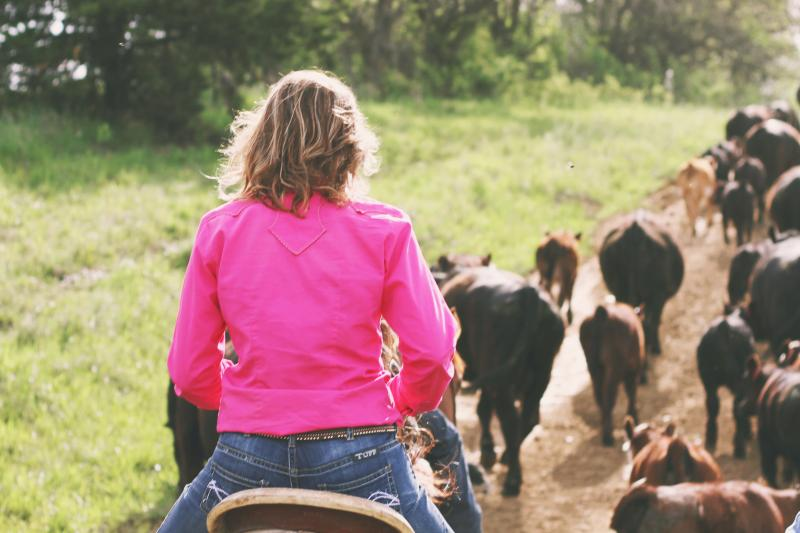 Photographer Marji Guyler-Alaniz rode horseback to take this photo of a woman herding cattle in southern Iowa.