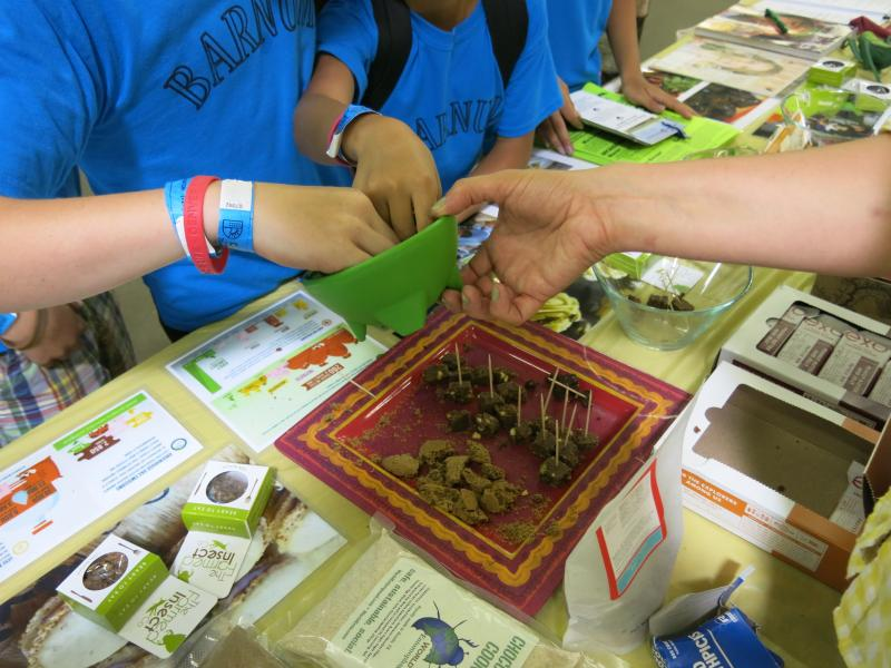 Children reach into a bowl of toasted crickets at the Denver County Fair. Texas-based educational nonprofit Little Herds used the event to promote entomophagy, the practice of eating insects.