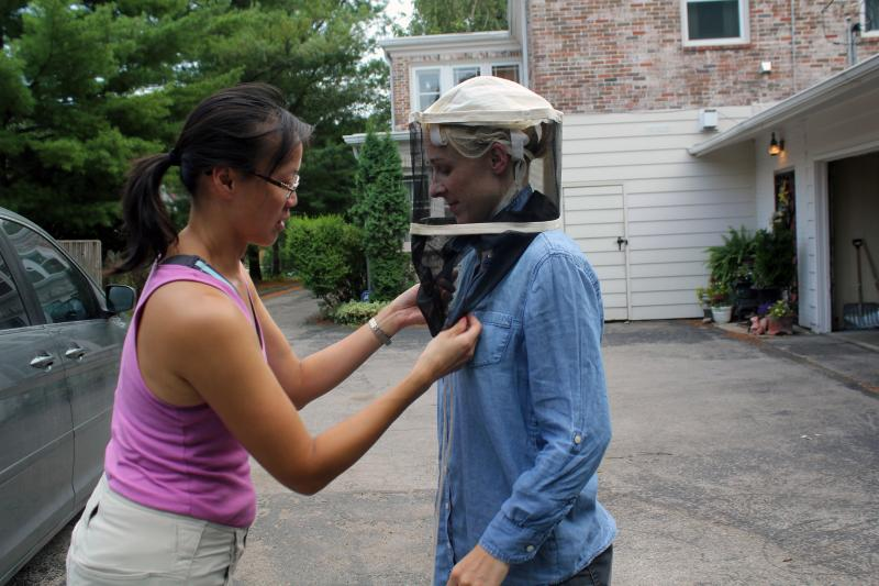 Beekeeper Julia McGuire fits a veil on photographer Marji Guyler-Alaniz before they approach a hive.