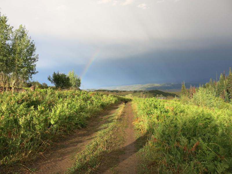 Yampa Valley Farms sit about 20 miles outside Steamboat Springs.