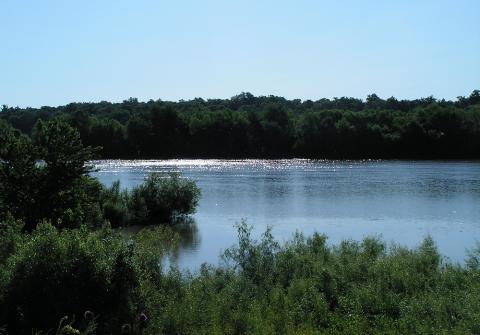 The Nature Conservancy hopes to re-connect the Emiquon Nature Preserve to the Illinois River near Lewistown, Ill.