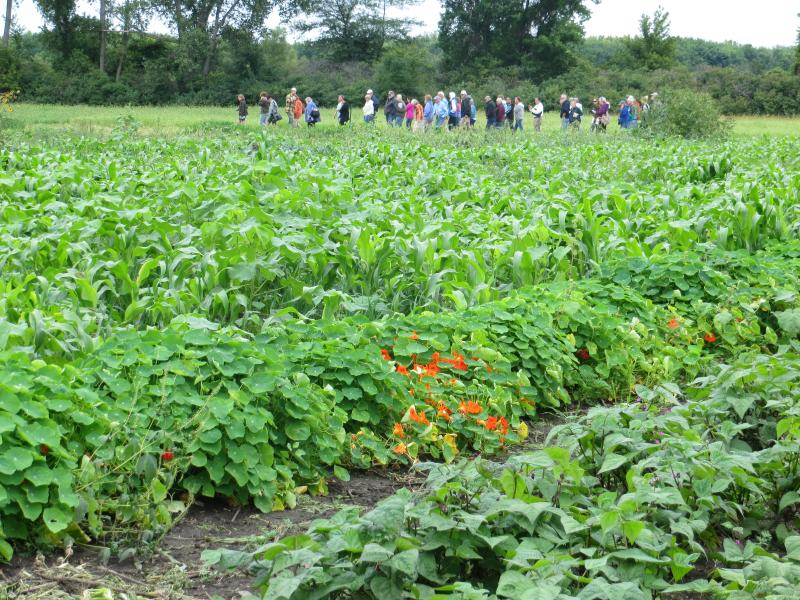 Red Earth Gardens was recently featured during a Practical Farmers of Iowa field day