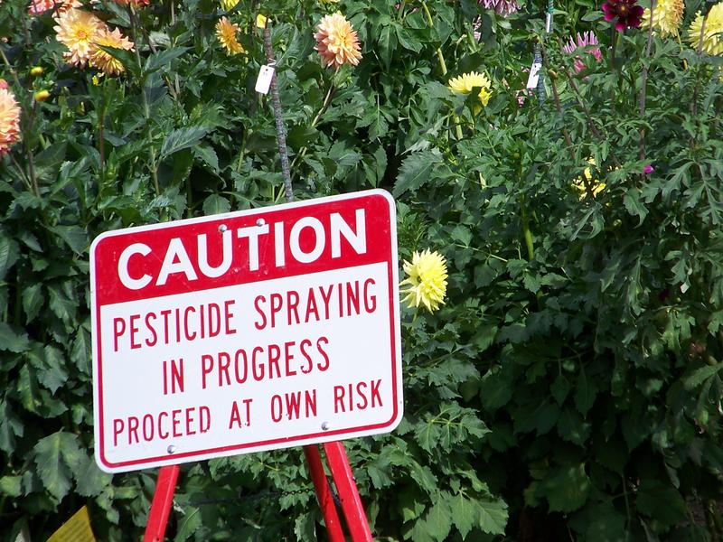 Seven pesticides commonly used by farmers may be linked to depression.