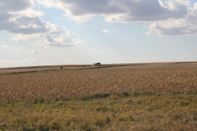 A farmer harvests soybeans in 2013. This year, an unknown driver combined 18 acres of an Illinois soybean field without permission. A criminal investigation is ongoing.