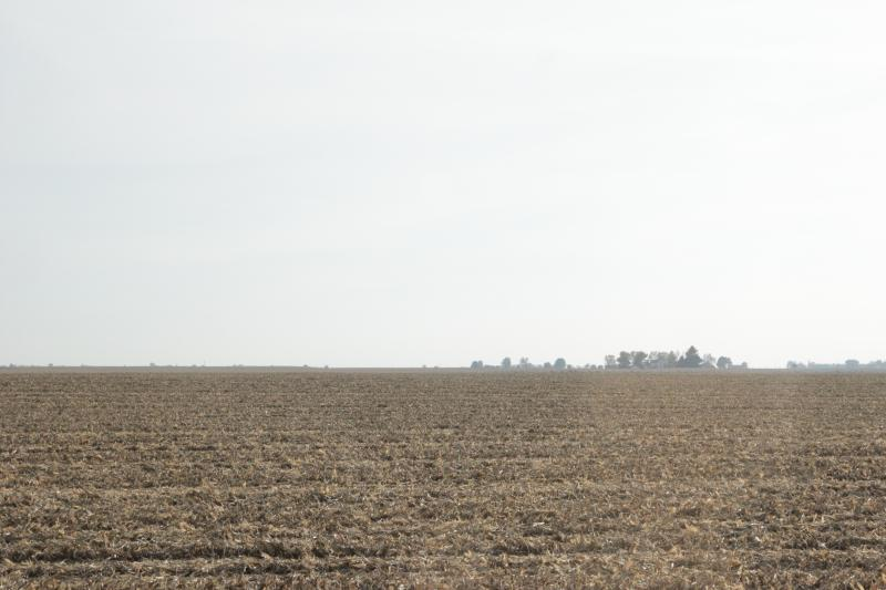 Grain farmers face slim margins this harvest. Some farms might lose money in 2015, experts say.