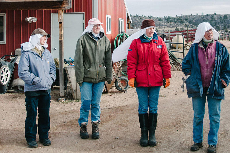 Sisters (from left) Ann, Gertrude, Elizabeth and Walburga work on the abbey's ranch, where they raise beef cattle, water buffalo and llamas.