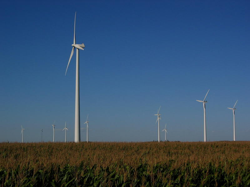 Iowa wind farms generate much of the state's electricity.