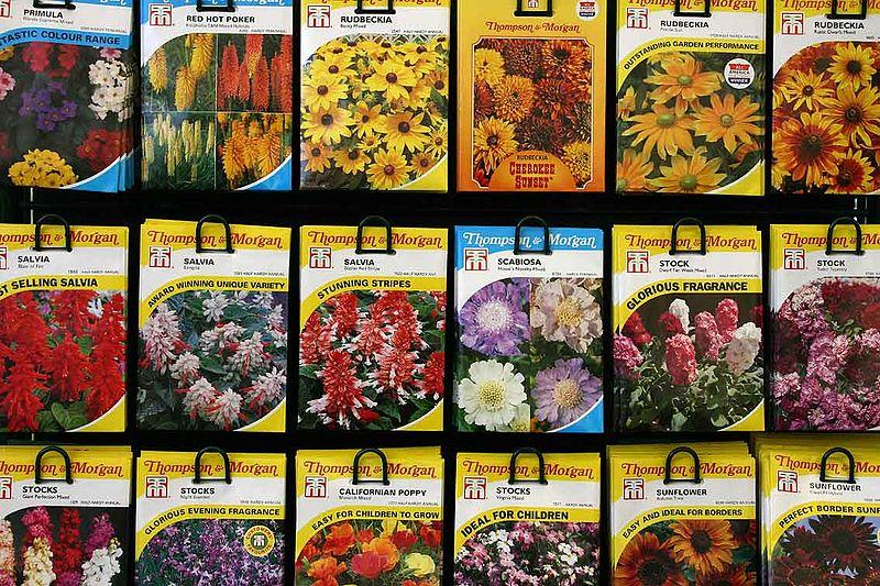Seed Packets On Display