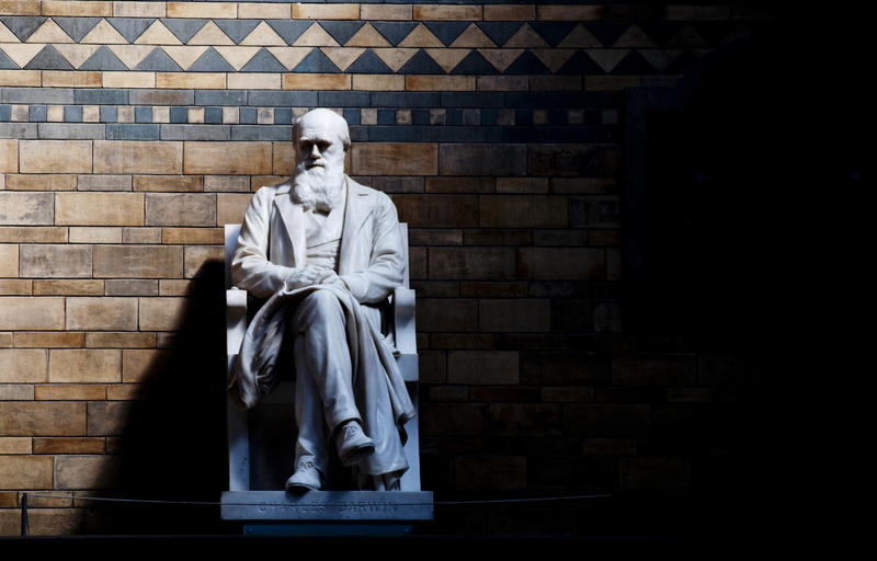 Statue of Charles Darwin at the Natural History Museum in London