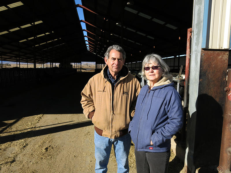Dairy owners Jon Slutsky and Susan Moore have had trouble hiring enough employees to effectively run their dairy.