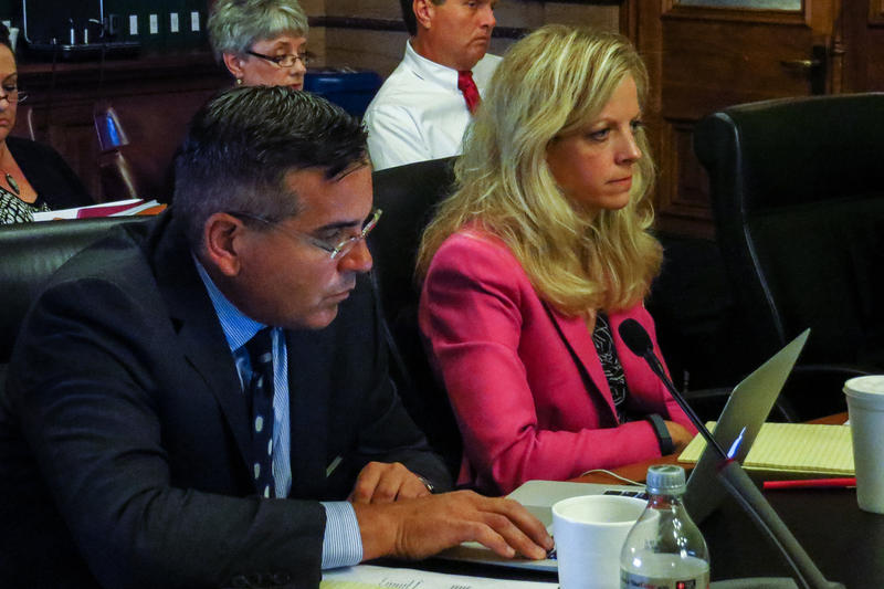 State Sentors Matt McCoy and Janet Peterson before Senate Oversight Committee, August 2014