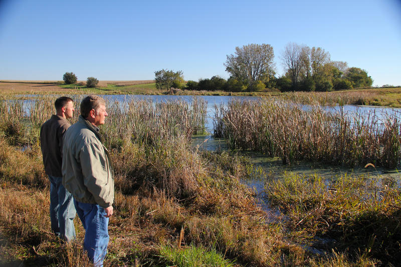 One of Iowa's newly created nutrient-reduction wetlands. The State of Iowa plans to construct 2,000 to 3,000 more wetlands to reduce their nutrient run-off to the Gulf of Mexico.