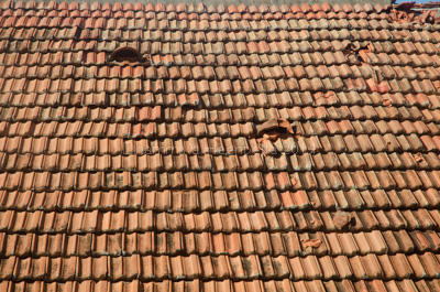 Why It's Best to Wait to Repair Your Roof