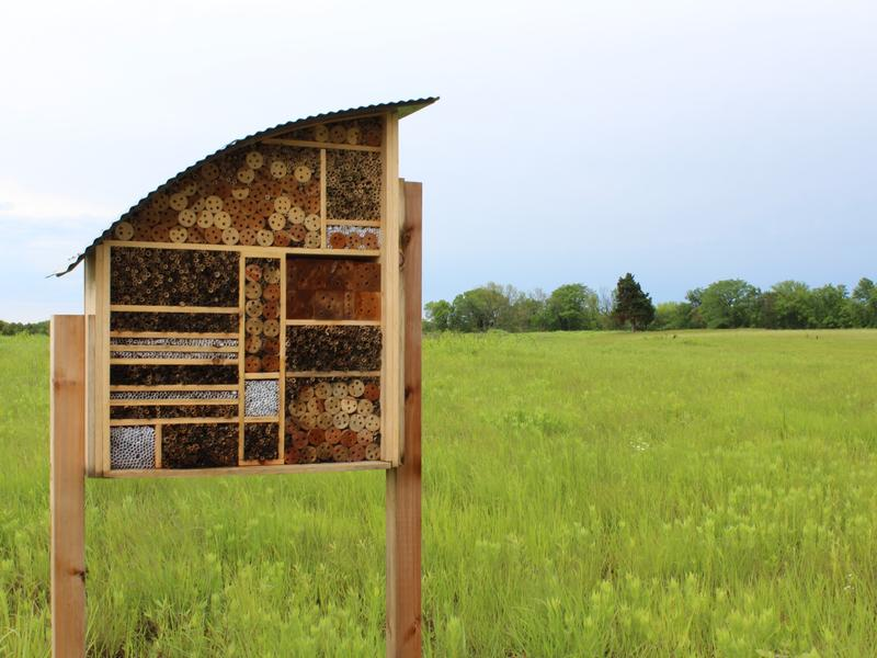 """In response to declining habitat for bees, researchers are creating """"bee hotels,"""" like this one in Lawrence, Kan."""