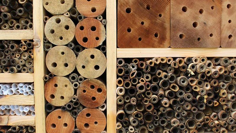 Paper, bamboo and wood blocks make up a bee hotel in Lawrence, Kan.