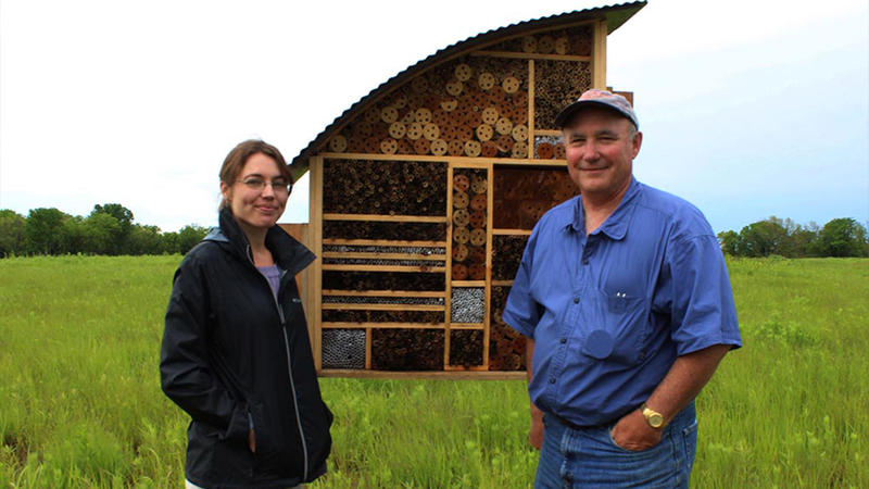 Researchers Daphne Mayes, left, and Scott Campbell stand in front of the bee hotel in Lawrence, Kan.