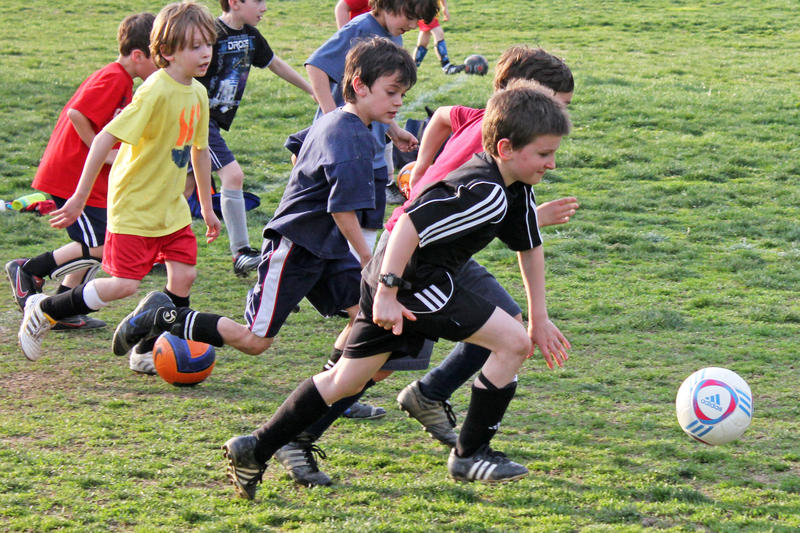 PE has shifted away from teaching the rules and skills of games to teaching fitness skills that expand past the classroom.