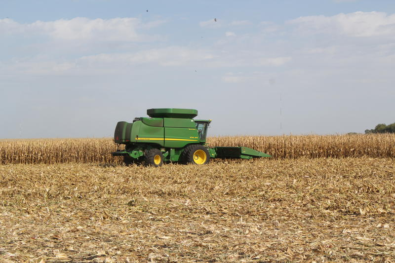 Agriculture observers say lower prices and lots of rain will add up to less income for many Midwest grain farmers.