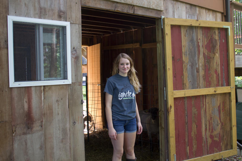A mini barn below the family's deck has space for rabbit cages and a pen for Ally's sheep.