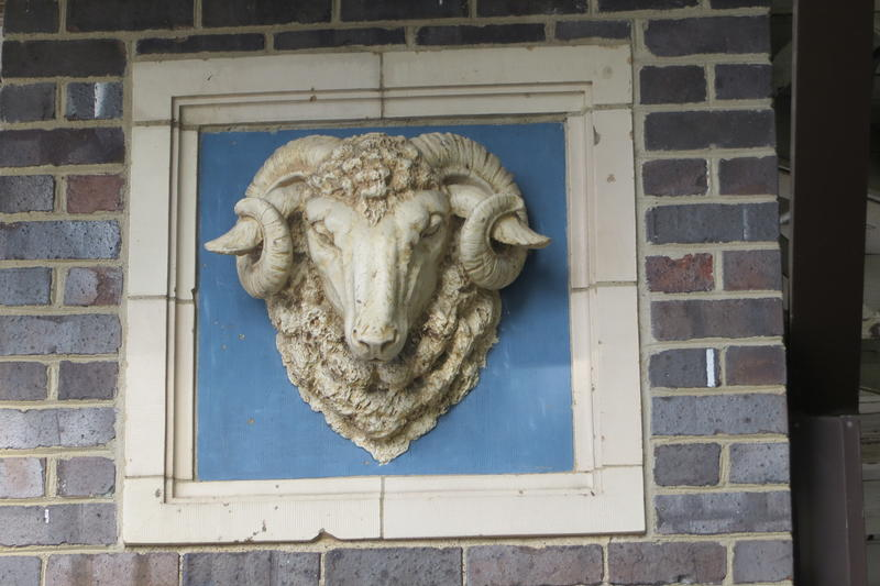 One of the near life size rams heads on the corners of the barn.