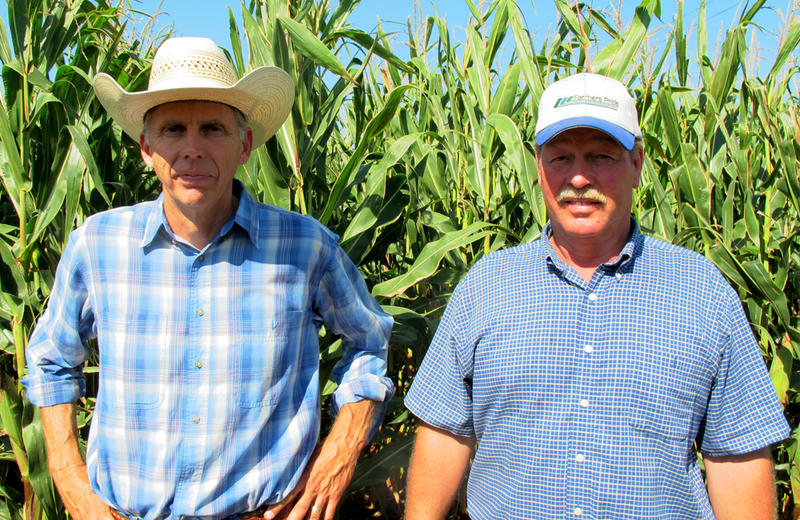 Keith Dittrich (left) and Loren Broberg farm in the same part of northeast Nebraska. This summer they've had the right amount of rain at the right time. Even though most of their fields are irrigated, they have hardly run the sprinklers.
