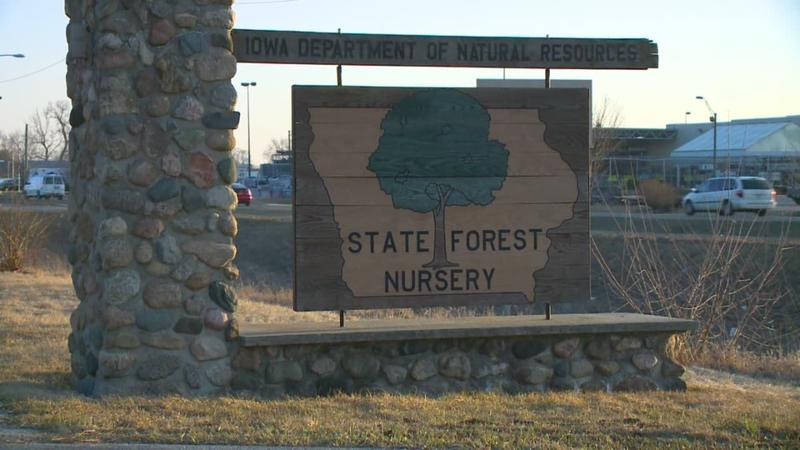 The State Forest Nursery has apprently survived the budget ax for now