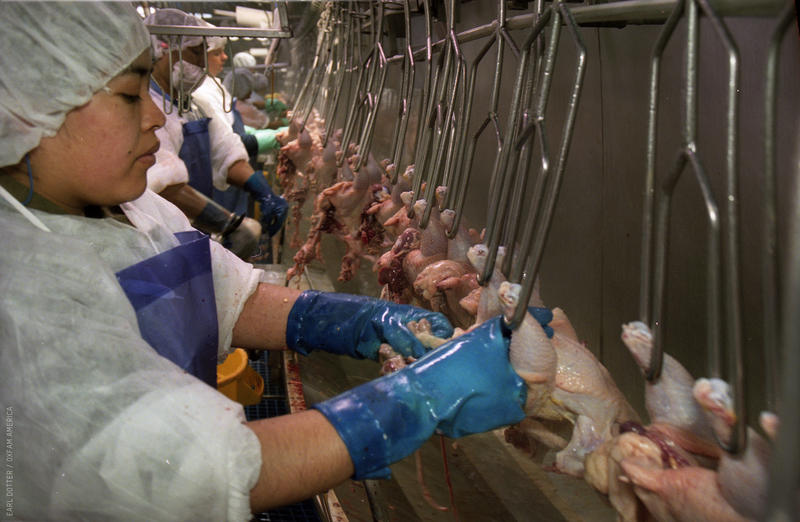 A poultry worker debones chicken at a processing plant in Montgomery, Ala. Fast line speeds and thousands of repetitive motions have left two-thirds of workers with musculoskeletal disorders, according to reports.