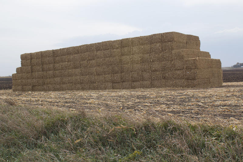 Residue left on fields after corn is harvested gets baled and stacked for eventual use as feedstock for cellulosic ethanol.