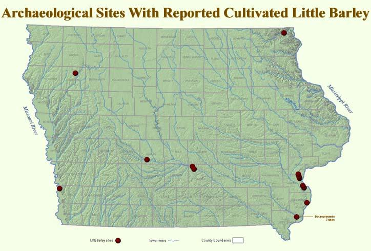 sites where little barley has been found in Iowa