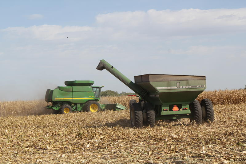 Corn, soybeans, wheat and cotton make up the bulk of the federal crop insurance program.