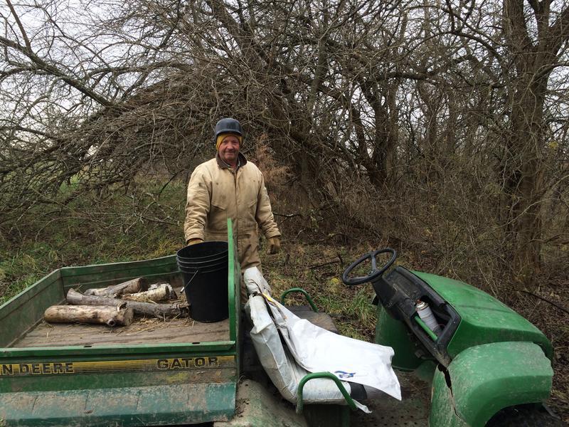 Doug Schock picks a hedge apple off a hedge tree near the edge of a pasture.