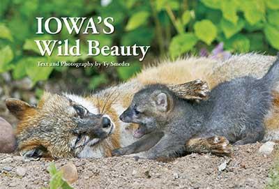 """Ty Smedes' latest book, """"Iowa's Wild Beauty"""""""