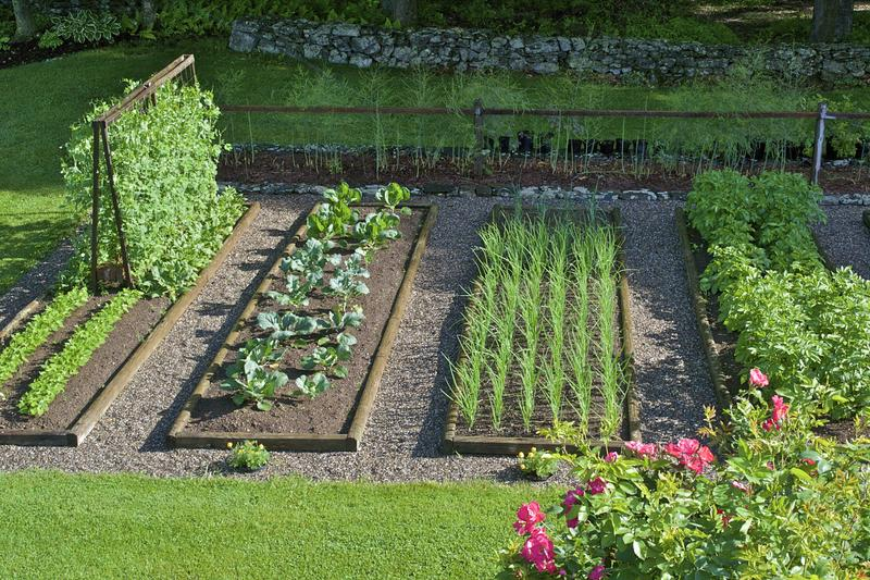 Snow may be covering Iowa gardens now, but the time to dream, and plan, your spring plot is now.