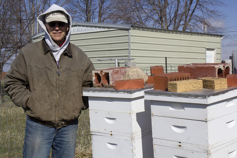 In addition to row crops and vegetables, Gary Guthrie has bees and lambs on his Nevada farm as well as a wind turbine, solar panels and prairie strips. Diversity helps spread risk.