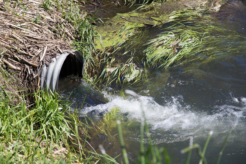 Drain tile emptying in a drainage ditch near Sac County, Iowa.