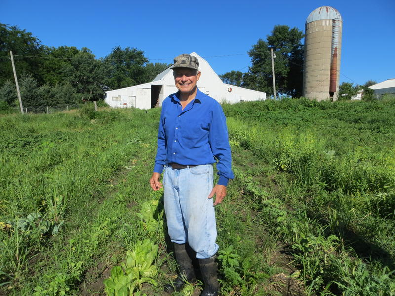 Produce grower Dan Lauters stands among the produce of his one acre operation near Garner