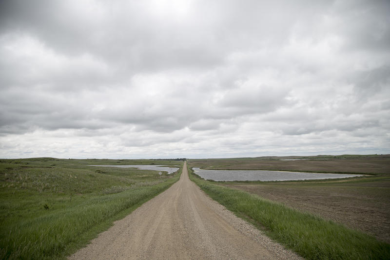 A rural road in the Prairie Pothole region of North Dakota divides a farm field from native prairie.