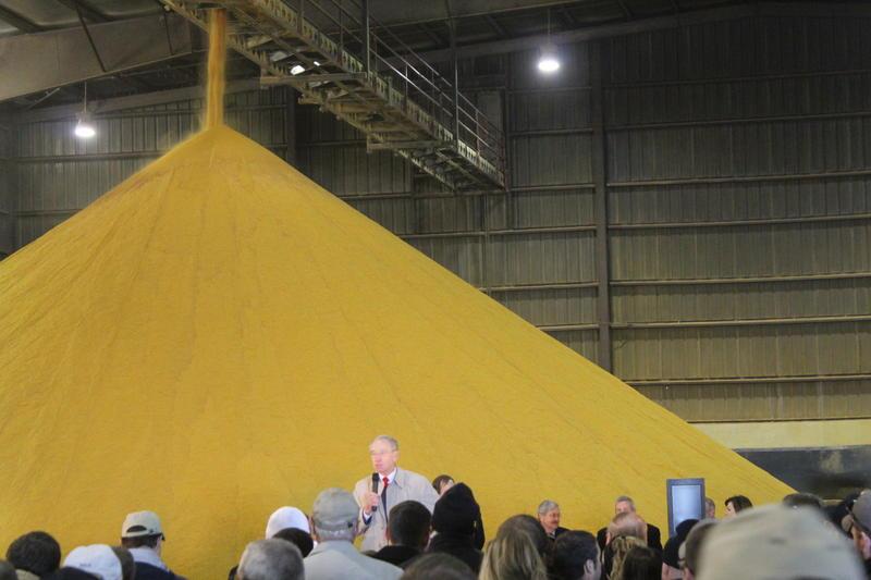 Sen. Chuck Grassley (R-Iowa) speaks at a pro-RFS rally in Nevada in 2013.