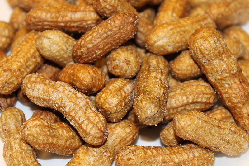 dried, fried peanuts