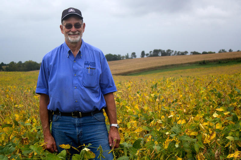 Central Iowa farmer Roger Zylstra put a rye cover crop on strips of this field after he harvested corn last fall. This year, he'll compare the soybean yields on the areas with and without the rye cover.