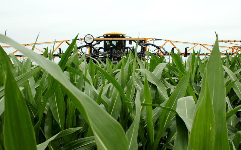 A tall sprayer fitted with crop sensors for Project Sense rolls through a Nebraska corn field.