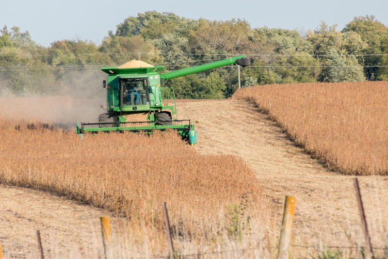 Soybean harvest this month in Story County
