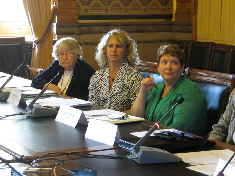 Members of the Iowa Drug Endangered Children Workgroup